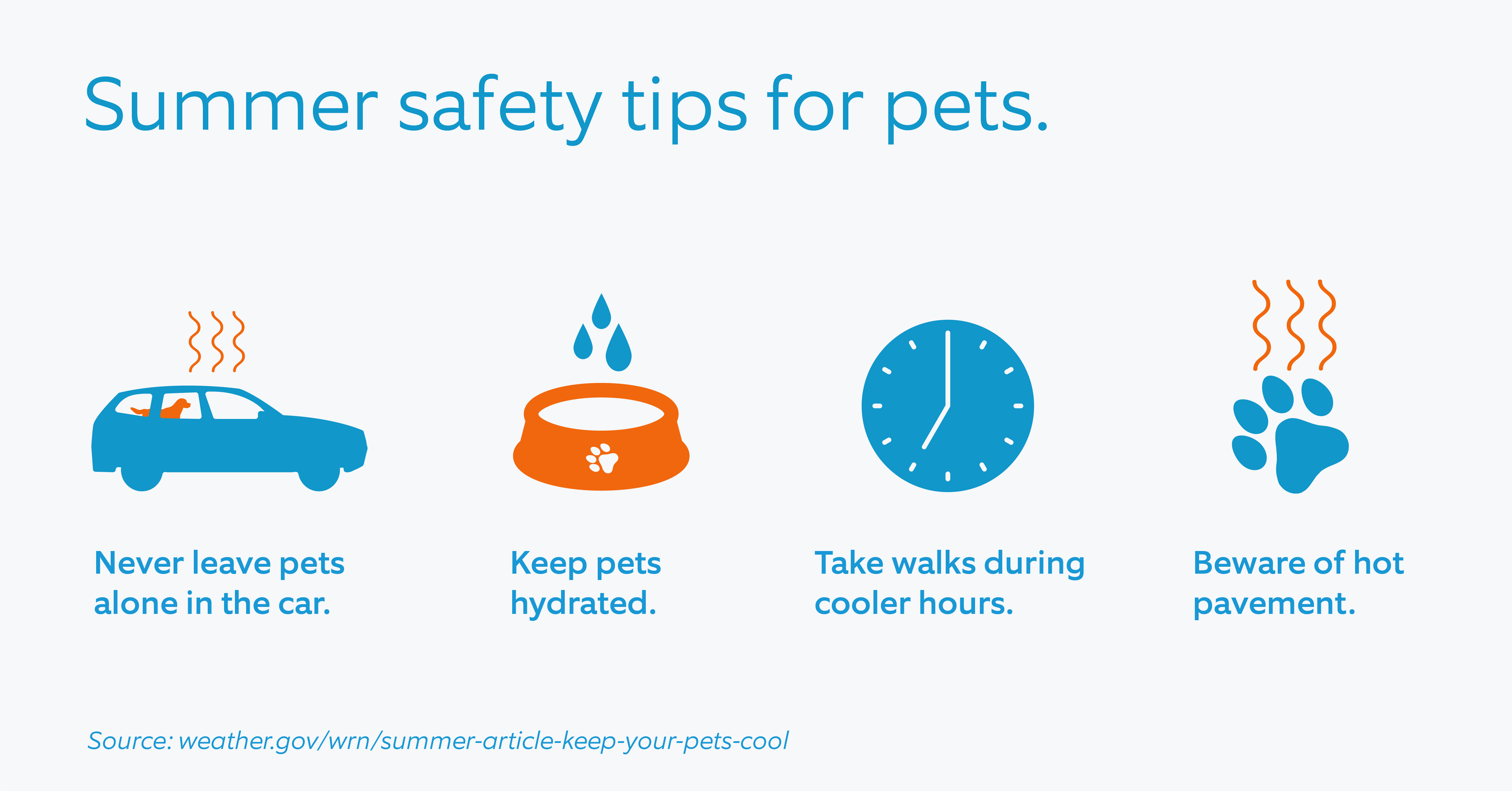 Summer_safety_tips_for_pets.png